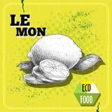 Dé la fruta exhausta del limón del estilo del bosquejo con las hojas y el limón cortado Fotografía de archivo