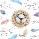 Dé la jerarquía exhausta con los huevos, diseño del pájaro del arte de la acuarela de pascua Imagen de archivo libre de regalías