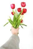 Dé las flores Imagenes de archivo