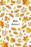 Dé las hojas de otoño exhaustas con otoño del texto hola Fondo con las hojas de la caída Forest Design Elements Fotografía de archivo