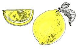Dé los ejemplos exhaustos de las frutas amarillas hermosas del limón imagenes de archivo