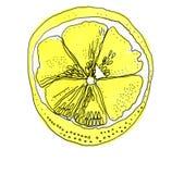 Dé los ejemplos exhaustos de las frutas amarillas hermosas del limón fotografía de archivo