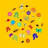 Dé los insectos divertidos exhaustos del garabato dispuestos en una forma del círculo Orugas coloridas y lindas, gusanos, maripos Fotografía de archivo libre de regalías