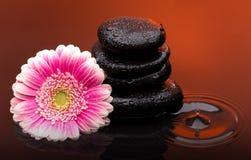 Dé masajes a las piedras con descensos grandes de la flor y del agua Foto de archivo