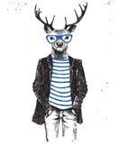 Dé para arriba vestidos los ciervos exhaustos en estilo del inconformista Fotografía de archivo libre de regalías