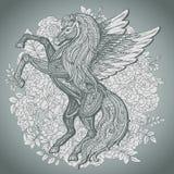 Dé a Pegaso exhausto el caballo con alas mitológico en backg de las rosas del arbusto Fotos de archivo libres de regalías