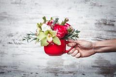 Dé sostener el pequeño florero rojo con el ramo de flores en el espacio gris para el texto Fotos de archivo
