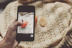 Dé sostener el teléfono y tomar la foto de la calabaza y de la hoja en caliente Imagen de archivo libre de regalías