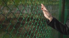 Dé sostener la cerca de la malla de alambre, mano de la mujer con cierre de la malla de alambre para arriba almacen de metraje de vídeo