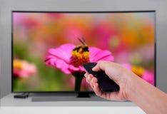 Dé sostener la TV teledirigida con un scre de la televisión y de la naturaleza Imagen de archivo
