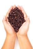 Dé sostener los granos de café asados en el fondo blanco Fotos de archivo libres de regalías