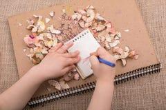 Dé sostener un lápiz del color en los cuadernos espirales Foto de archivo