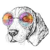 Dé a vintage exhausto el bosquejo retro del estilo del inconformista del perro divertido lindo del beagle con los vidrios Ilustra ilustración del vector