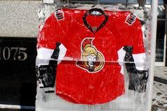 Débardeur d'Ottawa Senators Photographie stock libre de droits