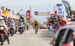 Débardeur jaune sur Mont Ventoux - Tour de France 2013 Image stock
