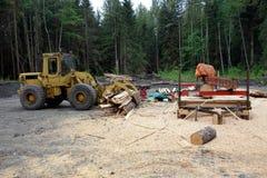 Déboisement dans le Canada du nord Photo libre de droits