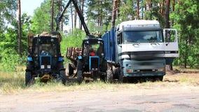 Déboisement et chargement automatisé sur un véhicule de camion clips vidéos