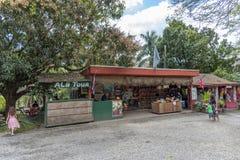 D?bouch? tropical de ferme de macadamia de fermes photographie stock libre de droits