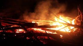 Débris brûlants en bois banque de vidéos
