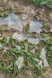 Débris de glace photographie stock libre de droits