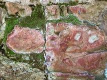 Début brique 1900 extérieure du ` s et mur en pierre couverts de la mousse Photographie stock