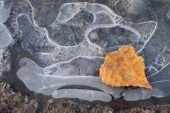 Début d'abstraction de l'hiver, fin d'automne photo stock