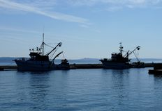 Début de attente de bateau de deux poissons Image stock