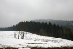 Début de l'hiver Photographie stock libre de droits