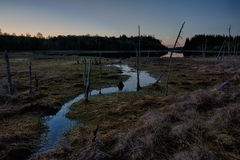 Début de la matinée au lac de marais Image libre de droits