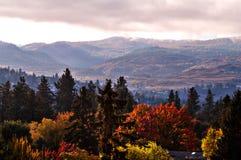 Début de la matinée dans les montagnes Photo libre de droits