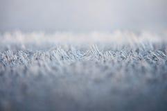 Début de la matinée Frost Photos stock