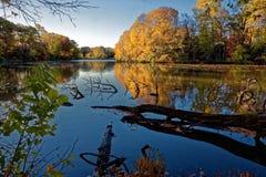 Début de la matinée sur l'étang d'or Images stock