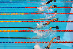 Début de natation 20 photos stock