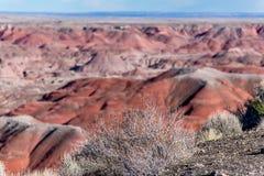 21 décembre 2014 - forêt pétrifiée, AZ, Etats-Unis Photo stock