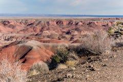 21 décembre 2014 - forêt pétrifiée, AZ, Etats-Unis Images stock