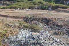 Décharge et animaux de déchets photographie stock libre de droits