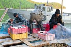 Déchargement de poissons photos libres de droits