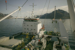 Déchargement des poissons congelés d'un navire à un autre navire en mer Photos libres de droits