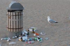 Déchets à la plage image libre de droits