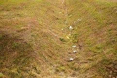 Déchets d'herbe Photo libre de droits