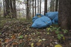 Déchets dans la forêt images libres de droits