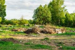 Déchets dans la forêt, le problème écologique de l'élimination des déchets, pollution de nature Photos libres de droits
