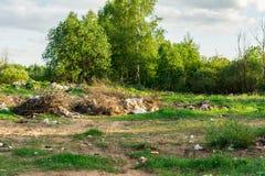 Déchets dans la forêt, le problème écologique de l'élimination des déchets, pollution de nature Photo stock