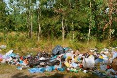 Déchets dans la forêt, déchets dans la nature, pollution de l'environnement photographie stock