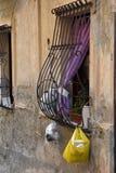 Déchets dans les rues de l'Italie photo stock