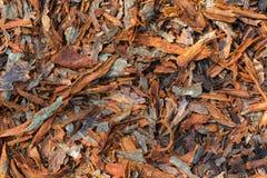 Déchets de bois de bois pour le charbon de bois brûlant images libres de droits