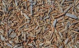 Déchets de bois pour le fond abstrait de texture Images libres de droits