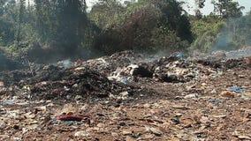 Déchets de décharge de déchets avec de la fumée au jour ensoleillé clips vidéos