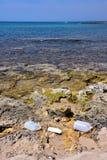 Déchets de plastique en nature photo stock
