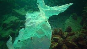 Déchets en plastique et autres débris flottant sous l'eau banque de vidéos